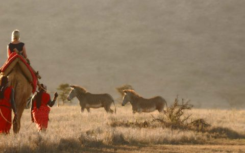 3 Days masai mara game reserve safari tour will take you to Maasai Mara which is situated in south-west Kenya, approximately 280kms from Nairobi City and is one of Africa's Greatest Wildlife Reserves