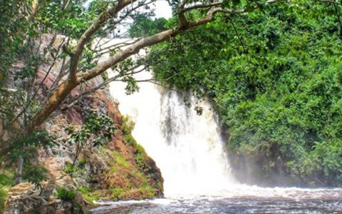 1 day Visit to Ssezibwa Falls, Mabira Forest & The Source of the Nile wakeup early morning have breakfast and transfer to Jinja, on the way you will have a stopover at the mighty Ssezibwa falls