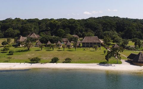 Ngamba Island Chimpanzee Tracking Habituation Experience enables you to discover one of Uganda's best tourism destinations! Enjoy flexibility and personalized services of small group guided tour with unforgettable wildlife encounters, cultural interactions
