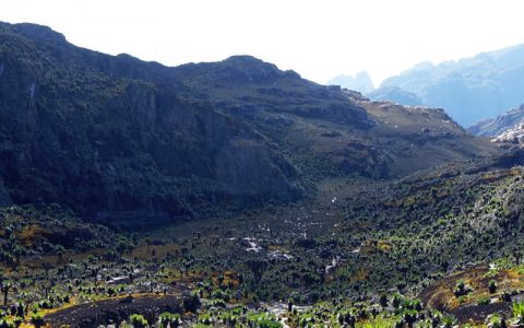 10 Days 9 nights Mountain Rwenzori Hiking Expedition You will have your breakfast in the morning, and then be picked you up from your hotel by our esteemed guide to transfer you to western Uganda