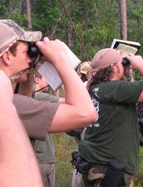 19 Days ultimate Safari Experience