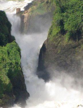 3_days Tour To Murchison Falls Via Ziwa Rhino Sanctuary