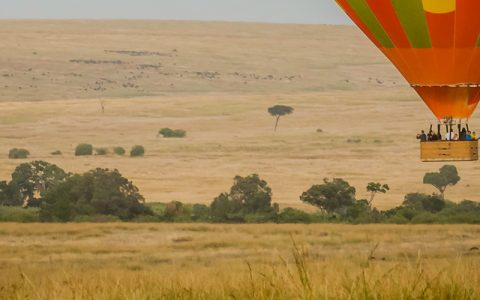 5 Days Hot Air Balloon Murchison National Park is designed for those guests that have enough time to spend in the Murchison national Falls area. With the introduction of Hot Air balloon safaris