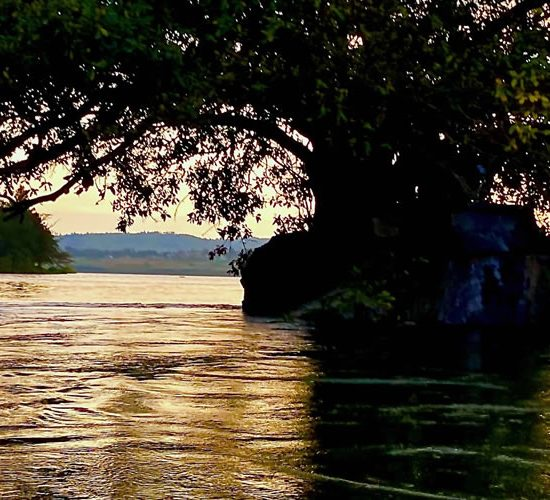 1 Day Jinja Tour, Sezibwa falls & Mabira forest Walk This trip is good for people who have limited time in Uganda,you can take this 1 day Jinja tour to see a some of the bit outside of Kampala city.